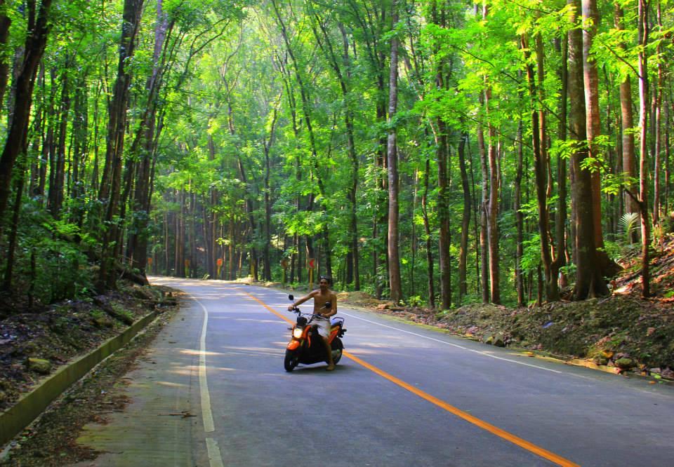 #Philippines #travelblog #bohol