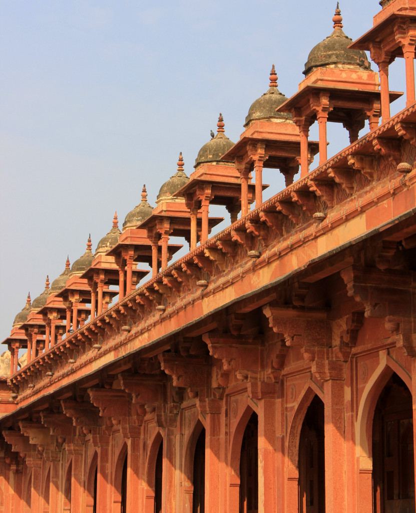 #India #travelblog #maverickbird