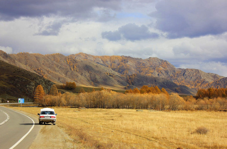 a scene from the altai krai road trip