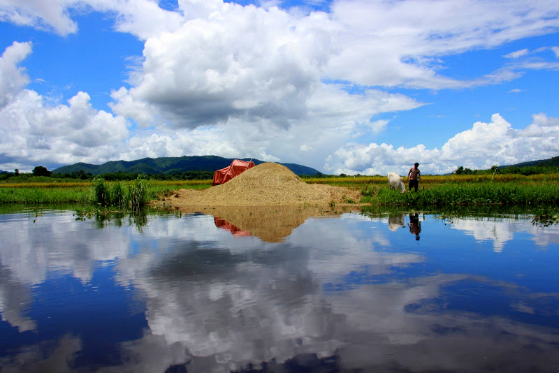 Lake Inle is famous for mirror like views