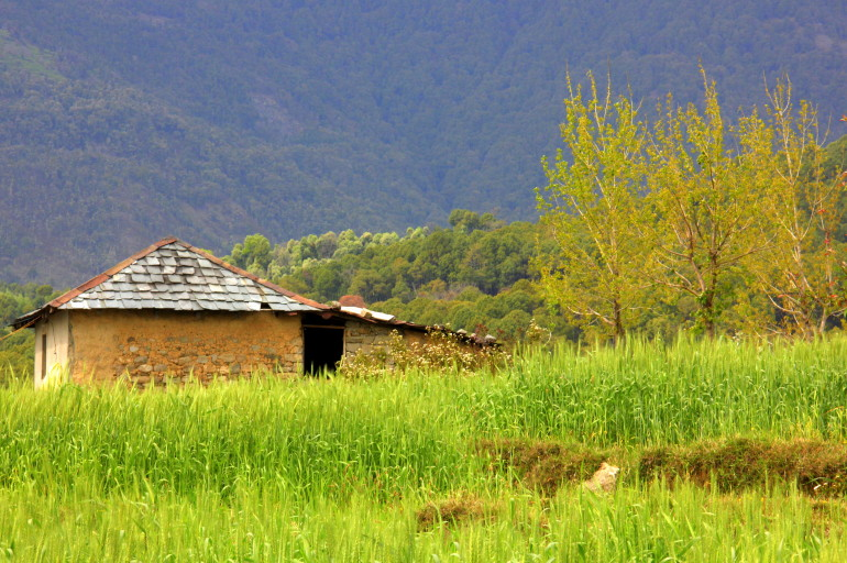 Slow traveling and a Dharamkot trip