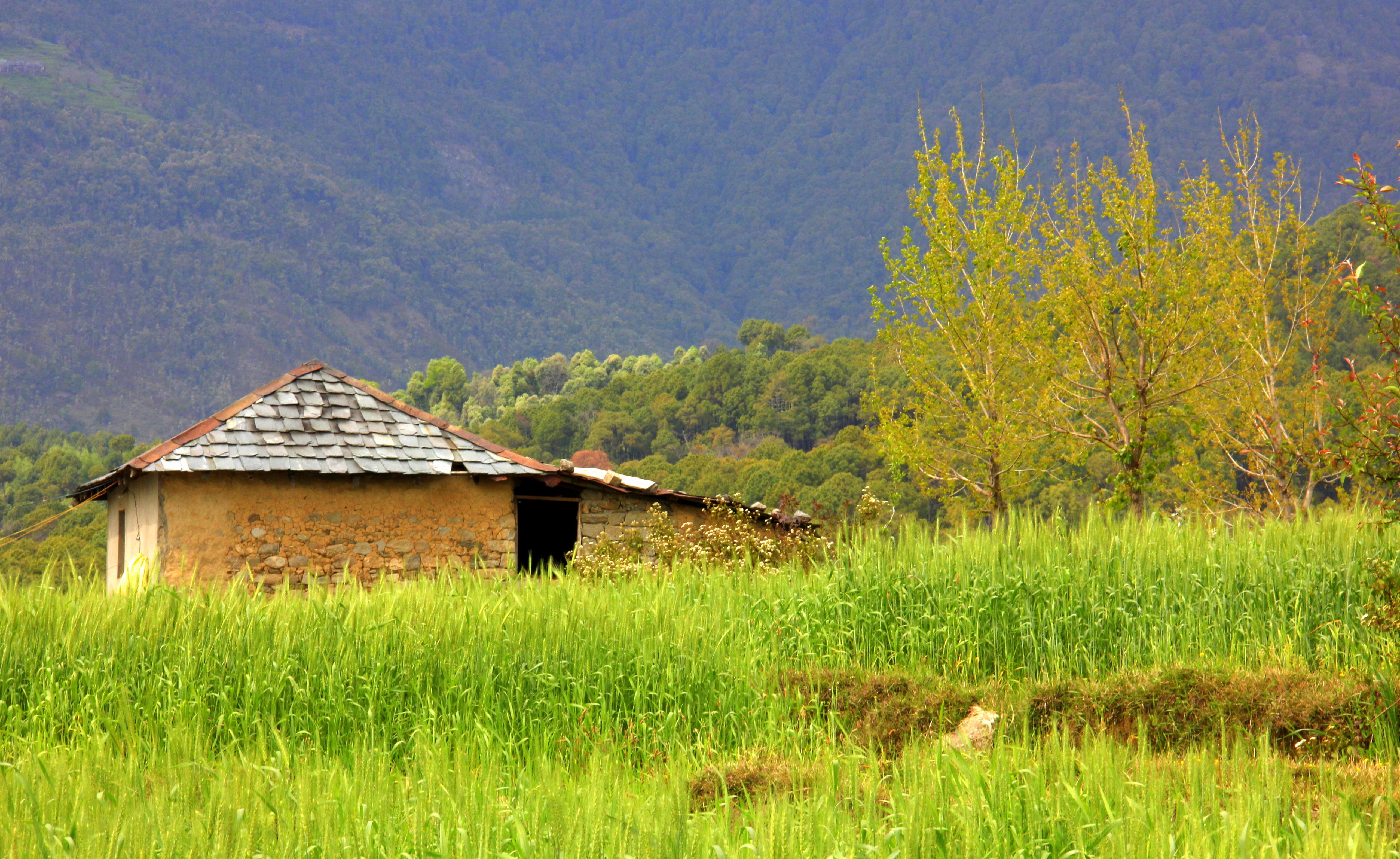 #India #Himachalpradesh #travelblog