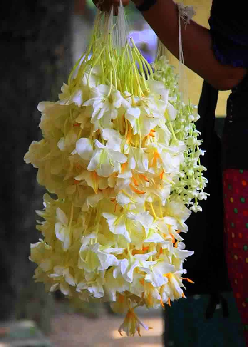 Flowers for sale at Yangon markets