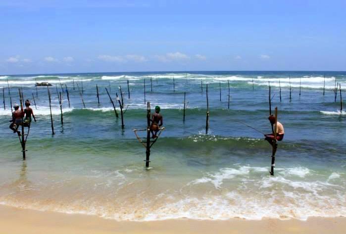 #Travelbloggerindia #Travelblog #Srilankatourism