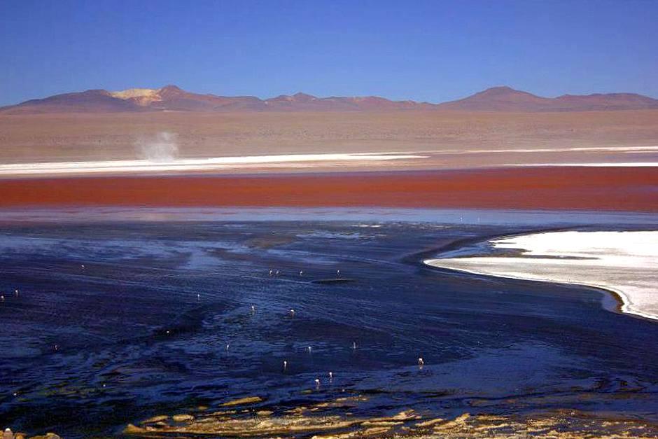 #travelbloggerindia #boliviatourism #southamerica #lakecolorado #uyuni