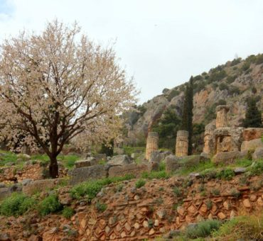 Visiting the centre of the earth at Delphi