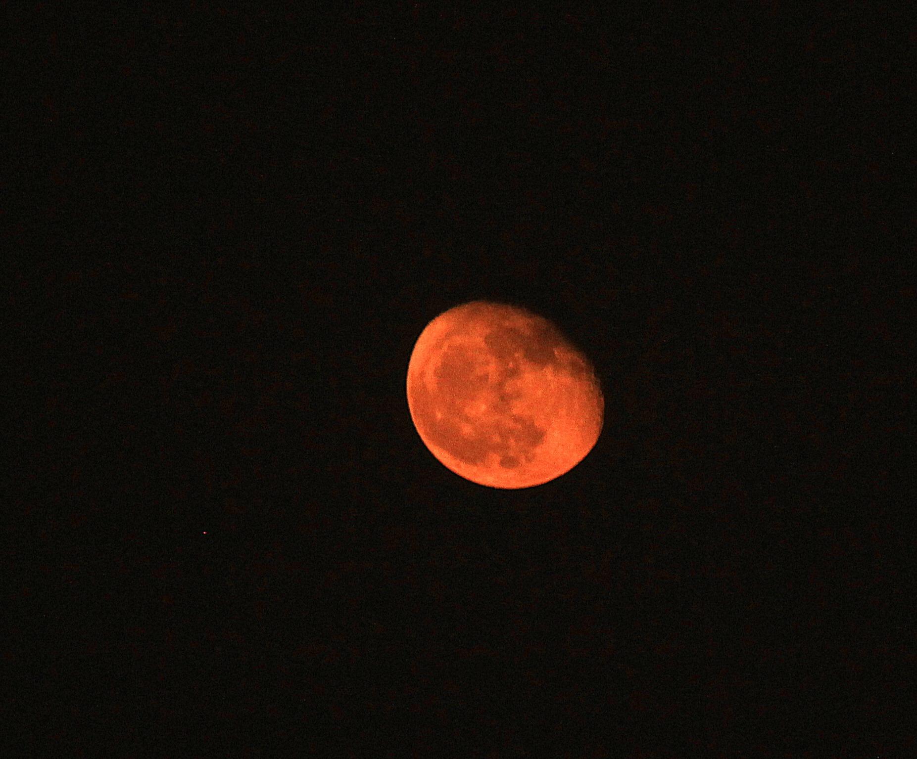 Moonlit night in Cairo