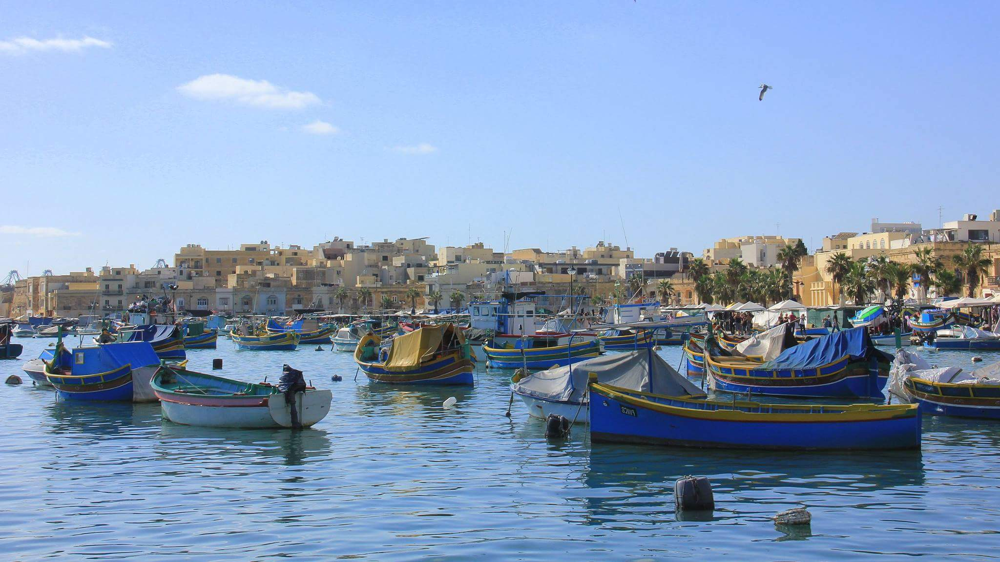 Visit Malta to enjoy for a variety of island life