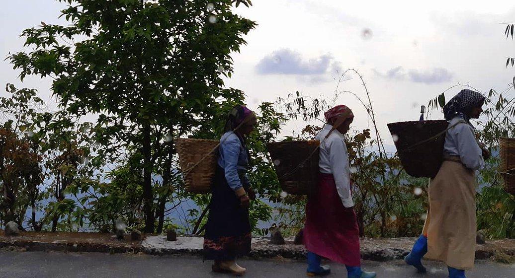 Darjeeling is famous for its fine tea.