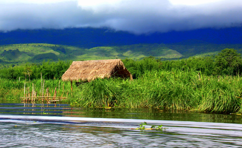This is a floating garden of lake inle