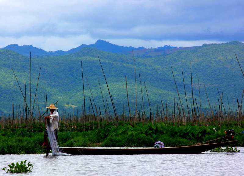 Residents of lake inle plant floating gardens