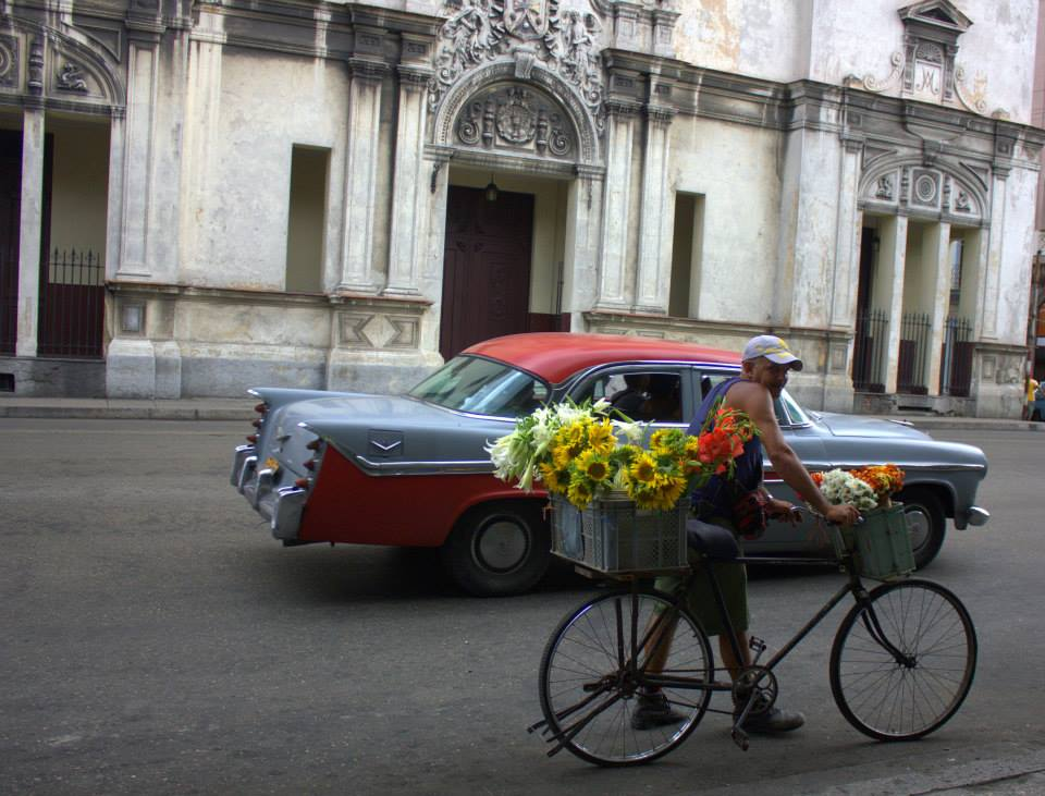 exploring havana makes one see such sights
