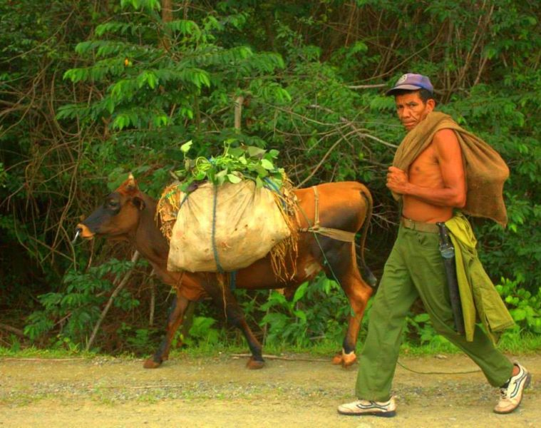 Baracoa is the most remote area of Cuba