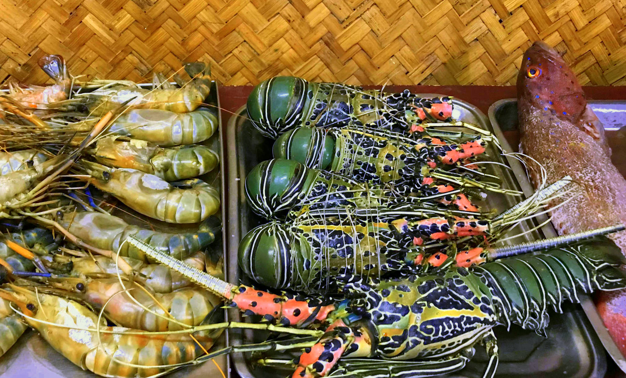 on your havelock island holiday eat lots of seafood