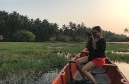 follow this kerala backwaters guide to enjoy a wonderful holiday