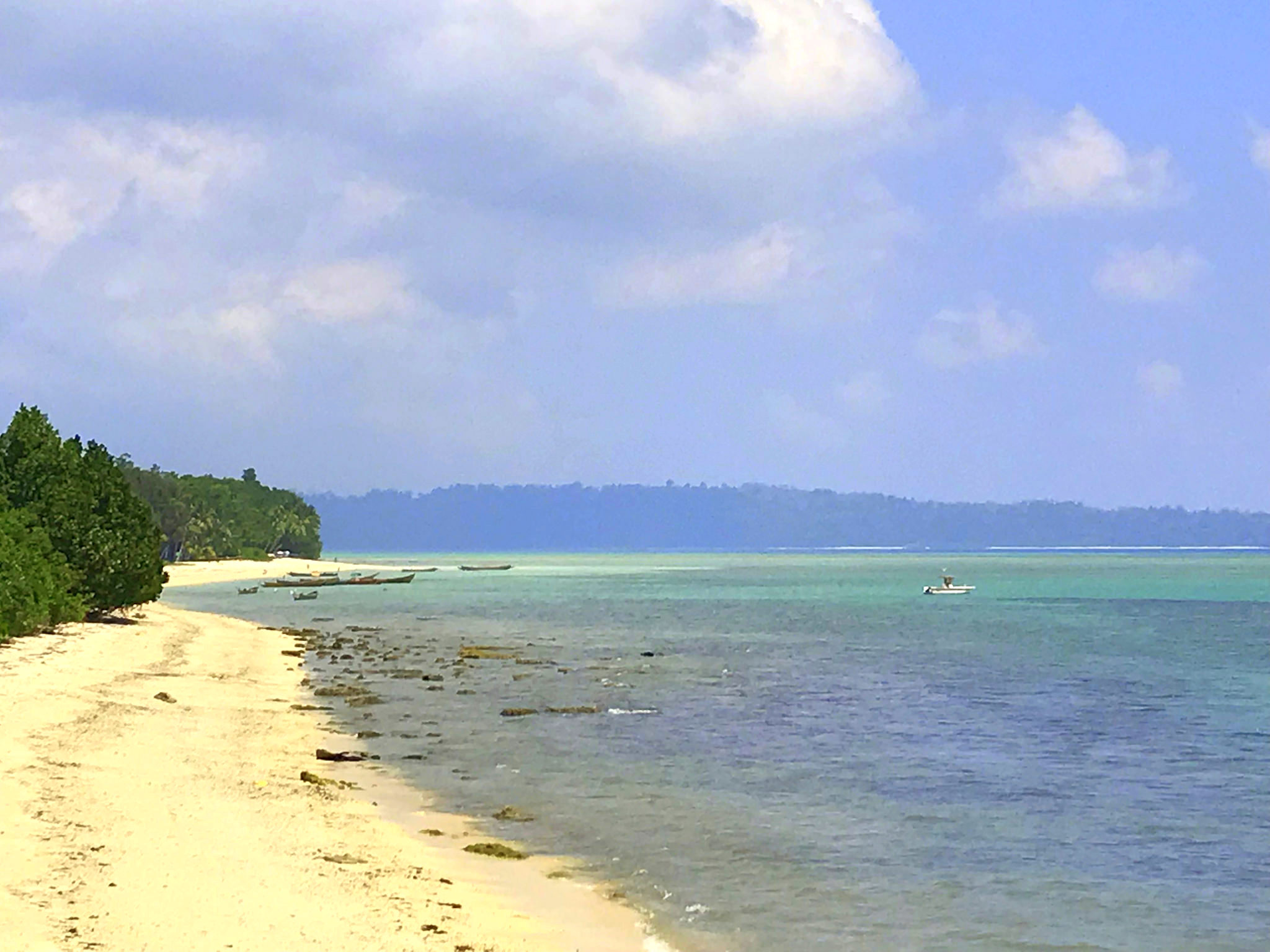 Diving is one of the popular activities on a Havelock Island holiday