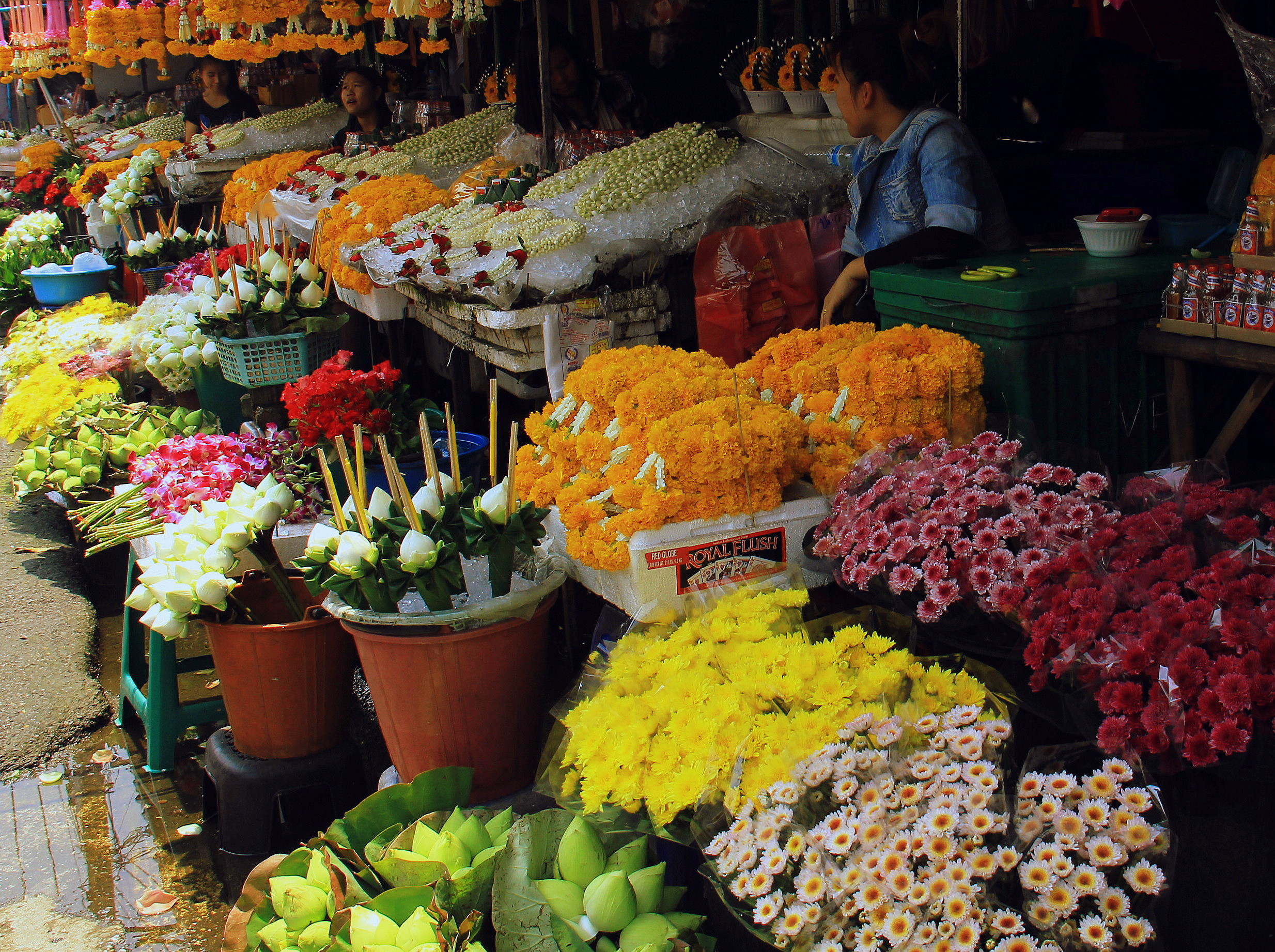 flowers on sale at chiang mai local markets