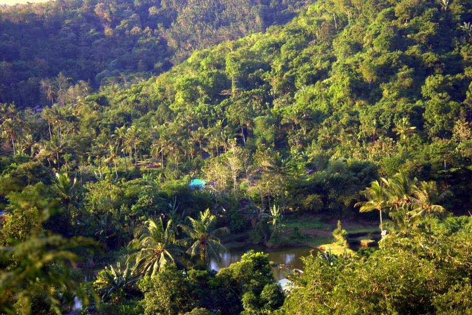 The lush, green Lombok island pleases at first sight
