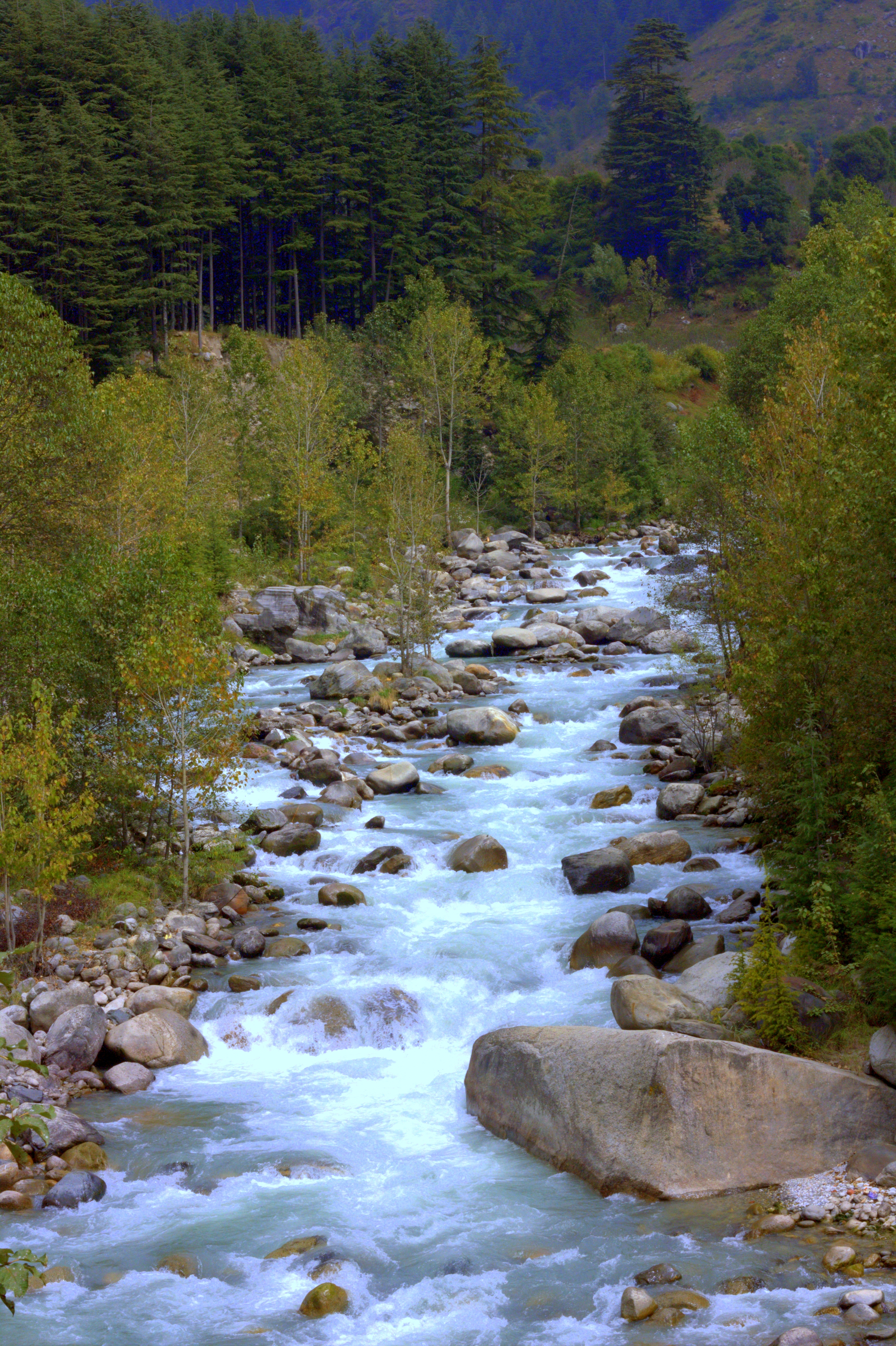 Fishing is a popular offbeat Manali activity