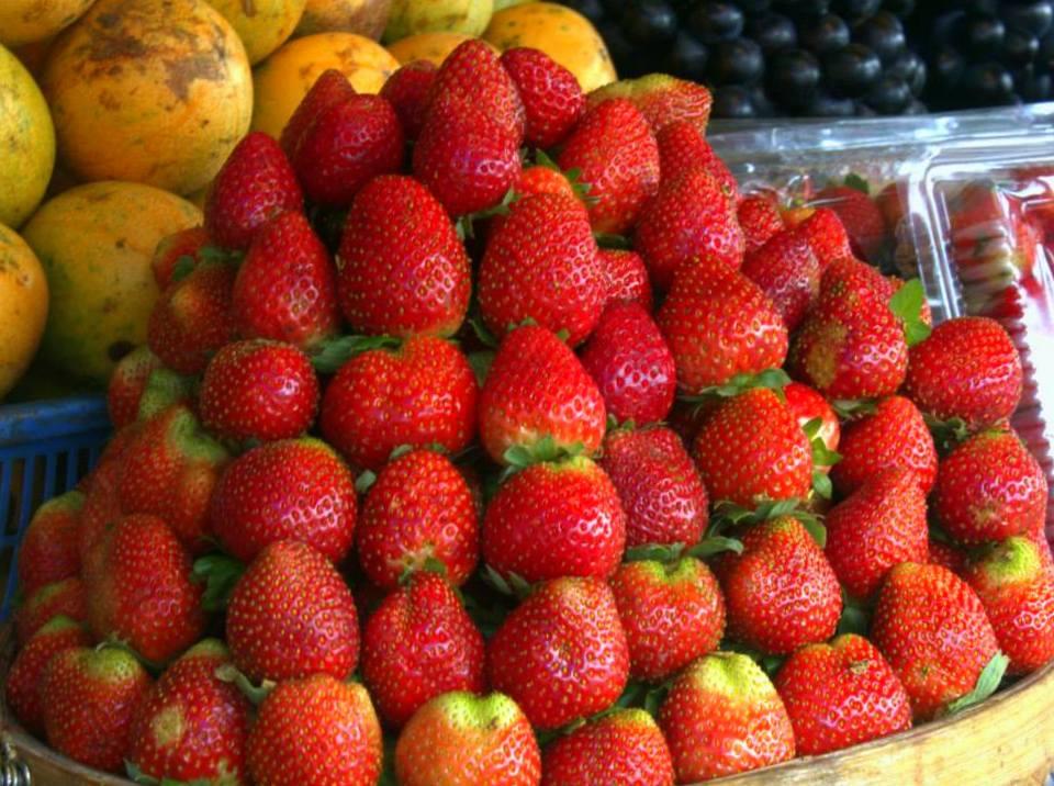 Candikuning Fruit Market in Bedugul