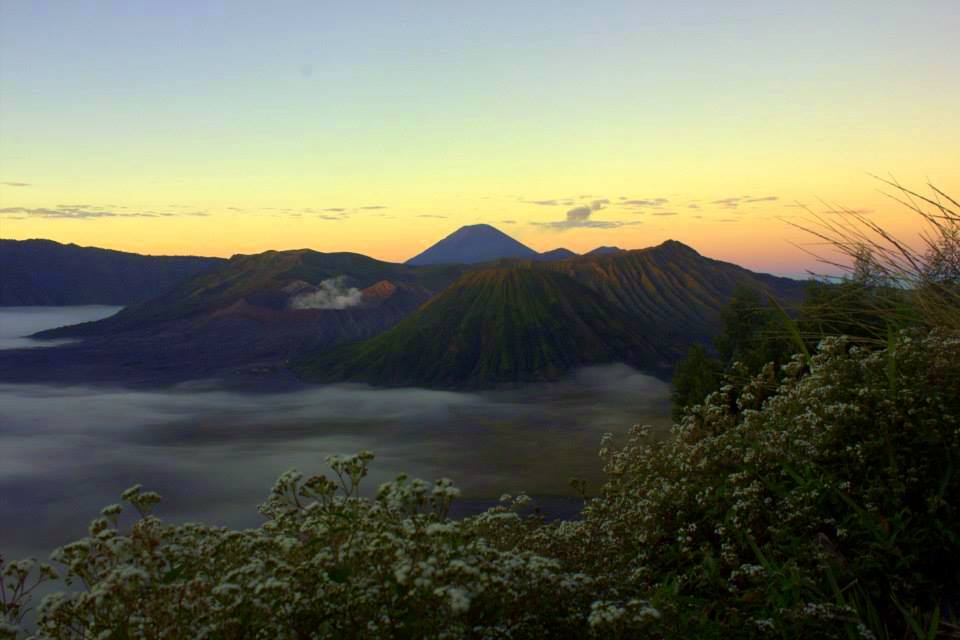 bromo is a volcano in java