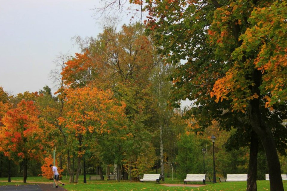 Moscow autumn scene at gorky park