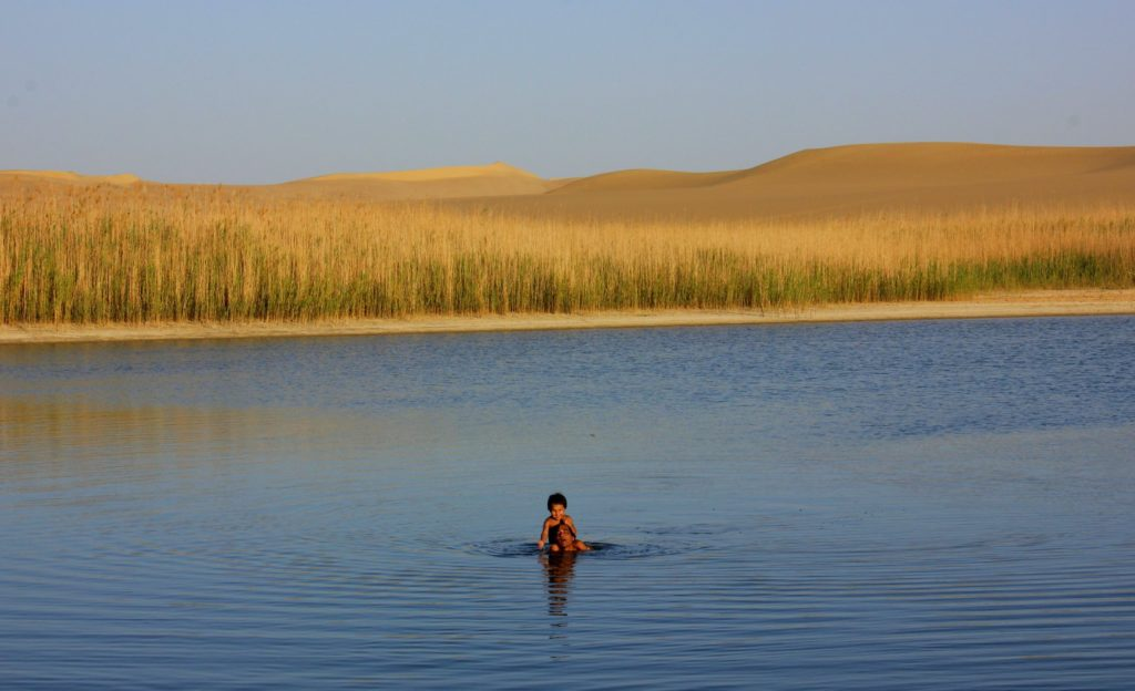 One of the fresh water lakes outside Siwa oasis