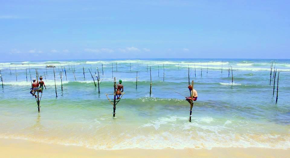 stilt fisherman of koggala