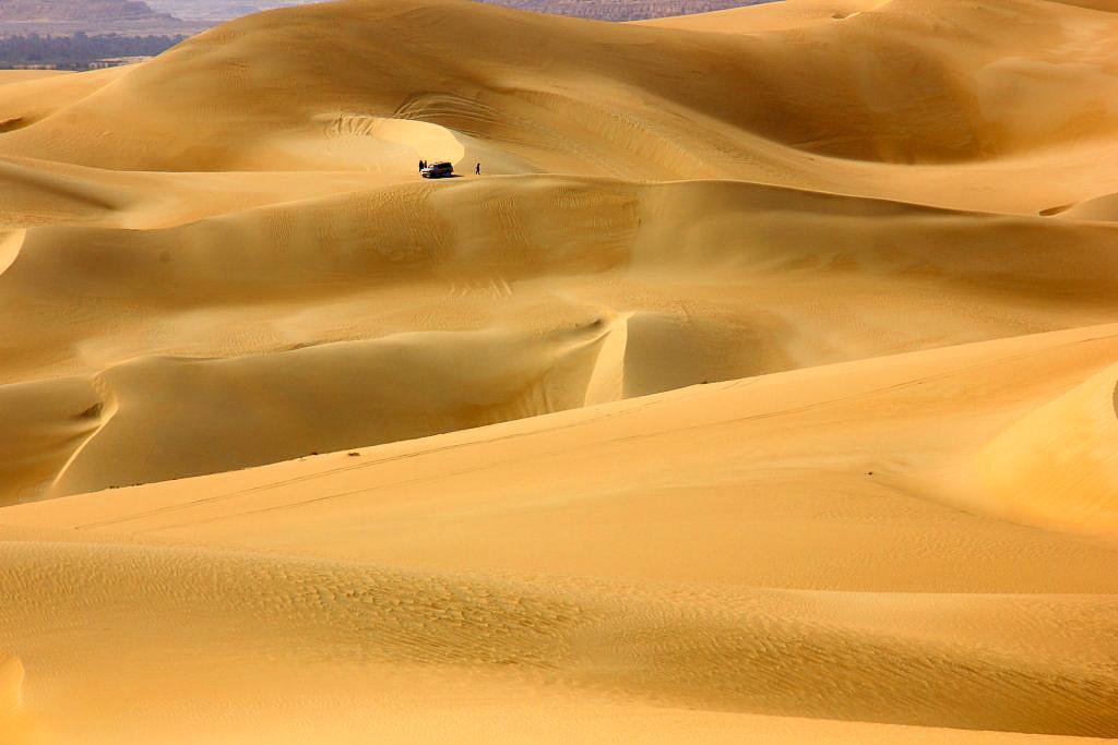 siwa oasis sand boarding